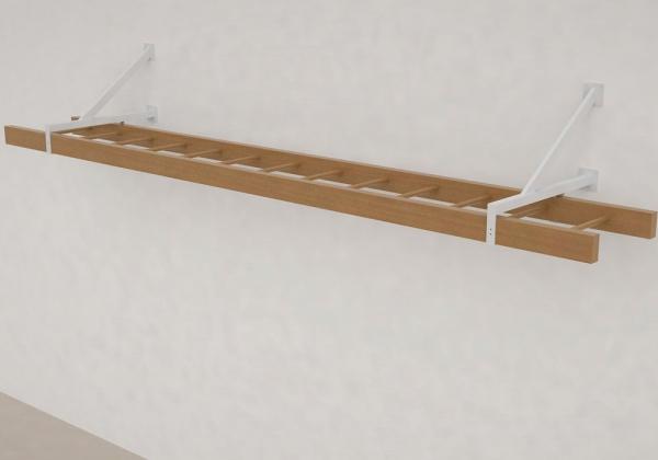 escalera-braquiacion-b30-3metros